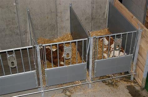 Felder System Stalltechnik Kg K 228 Lbereinzelboxen