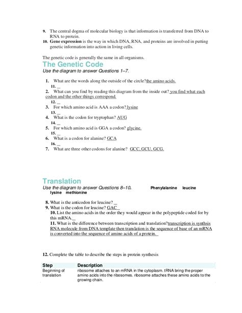 Genes Code For Proteins Worksheet