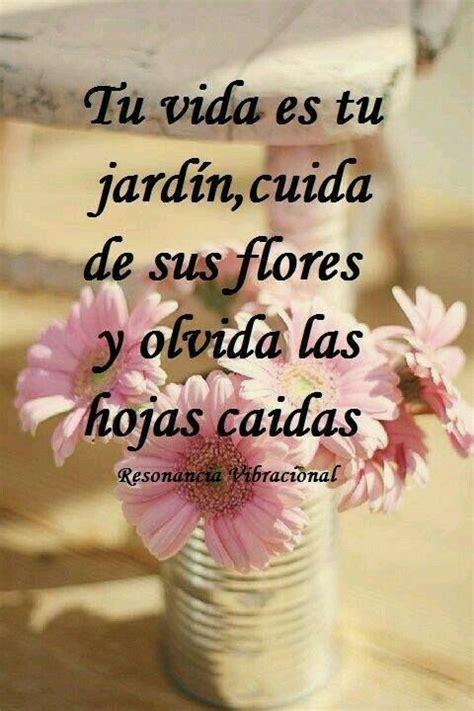 imagenes frases positivas con flores 1000 images about notitas on pinterest frases te amo