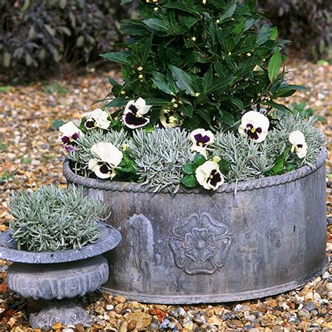 Front Garden Ideas With Gravel Landscaping Front Garden Ideas Gravel