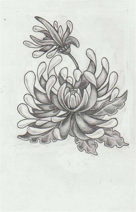 small chrysanthemum tattoo chrysanthemum search tattoos