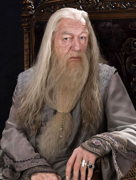 what house was dumbledore in pinterest the world s catalog of ideas