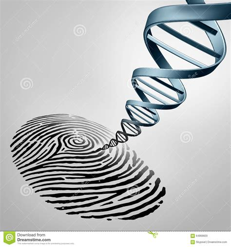 Finger Print Background Check Genetic Fingerprinting Stock Illustration Image 64869820