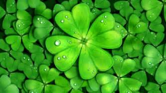 luck screensavers lucky charms live wallpaper android apps on google play