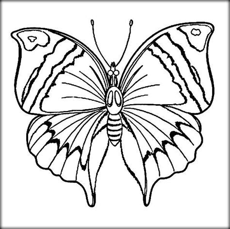beautiful butterfly coloring pages beautiful butterfly coloring pages for preschool color zini