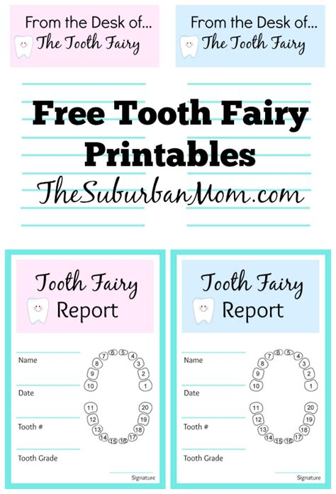 free printable tooth certificate template tooth ideas and free printables tooth