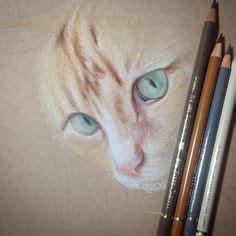 Cat Print Twist Up Crayon Set faber castell polychromos vs prismacolor colored pencils