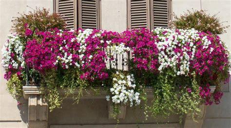 terrazzo fiorito come progettare un balcone fiorito ville e giardini