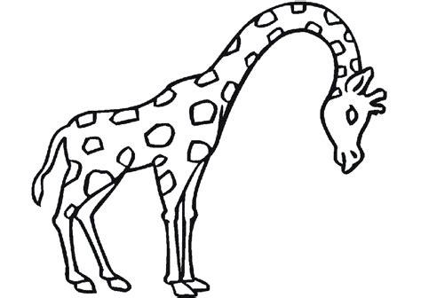 imagenes infantiles para colorear de animales dibujos de animales para colorear dibujos para ni 241 os