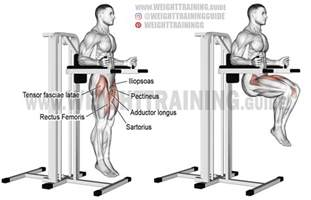 captain s chair leg raise exercise guide and