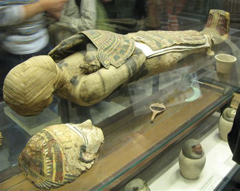 by mummy mummies of egypt pictures