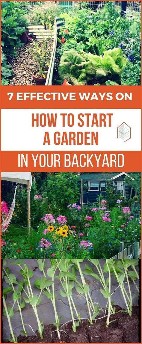How To Start A Garden In Your Backyard effective ways on how to start a garden in your backyard best survival gardening images