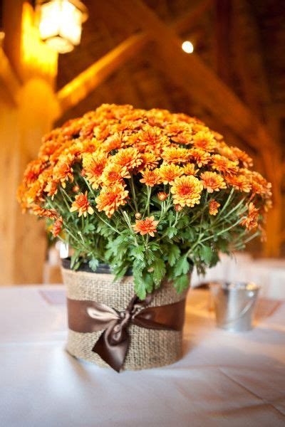 Fall Flower Wedding Centerpieces by 25 Best Ideas About Fall Wedding Mums On Fall