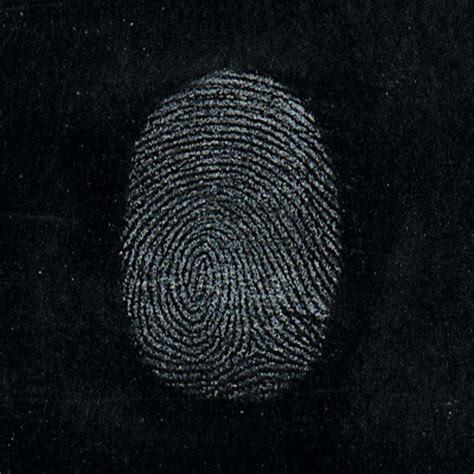 forensics consolidated enterprises
