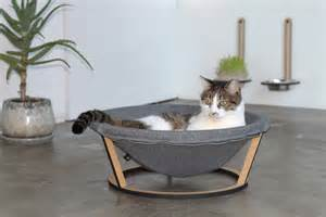 dogs by design the cat s meow of creature comforts the japan times