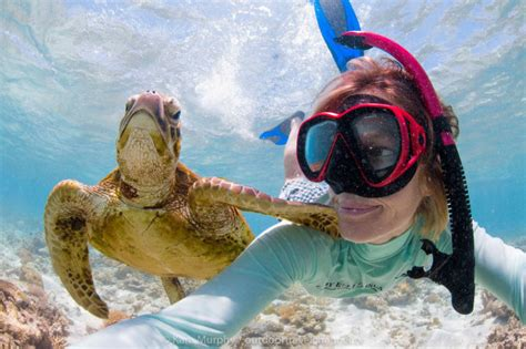 best places in the world for snorkeling 25 best picturesque places for snorkeling world