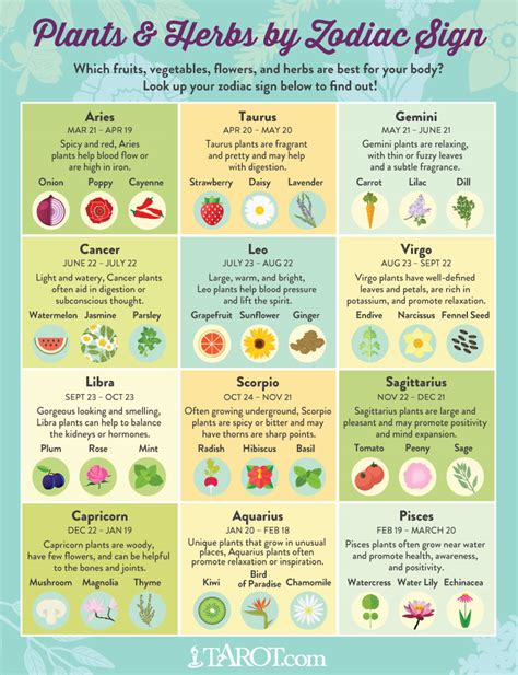 astrology sign plants and herbs for your zodiac sign