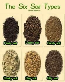 Best Type Of Fertilizer For Vegetable Garden - best 25 soil type ideas on pinterest