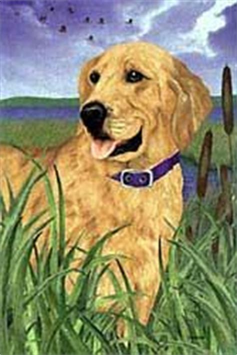 golden retriever color variations the golden retriever shop flags outdoor decor section