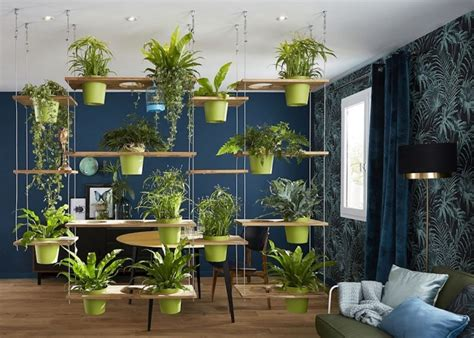 indoor garden ideas  perfect  small apartments