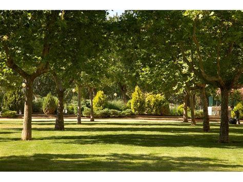 imagenes jardines y parques parques y jardines de calatayud