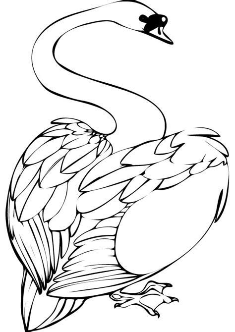 swan coloring pages swan coloring pages to and print for free
