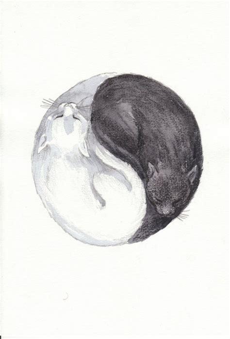 cat yin yang tattoo ying yang cats yin yang pinterest