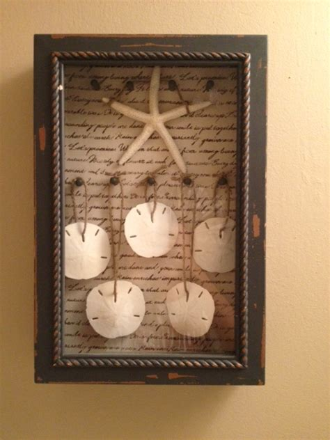 diy sand dollar crafts sand dollar shadow box diy shadow box box