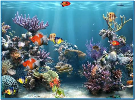 screensaver themes for windows 10 aquarium live wallpaper windows 10 wallpapersafari