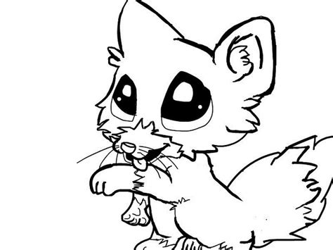 coloring pages baby fox cute baby fox anime clipart panda free clipart images