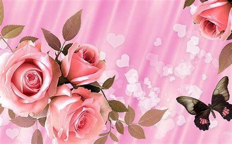 imagenes de rosas diferentes colores rosas de color rosa para san valent 237 n fondos de pantalla