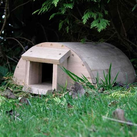 hedgehog houses to buy buy hedgehog house the worm that turned revitalising