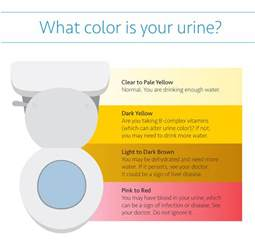 what color is your blood before it hits the air what color is your urine uc irvine health orange