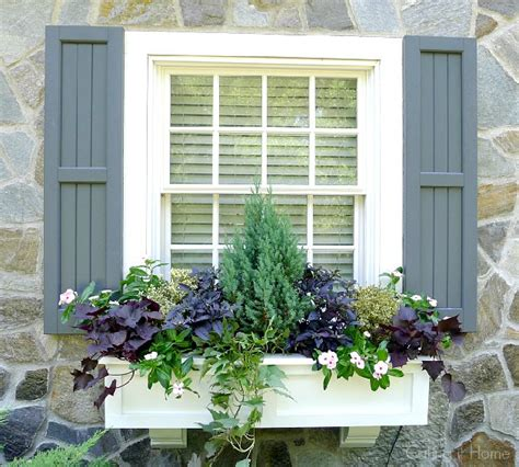shutters and window boxes calling it home my summer window boxes