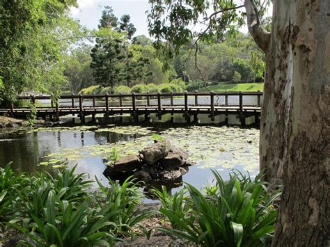 Gold Coast Botanical Gardens Botanical Garden Gold Coast Gold Coast Botanic Gardens Benowa Things To Do Weekends With