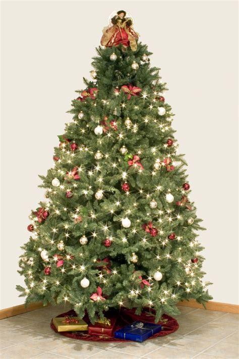 motherlode christmas tree showdown real vs fake