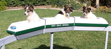 Backyard Monorail by Monorail Modeling Page Puppy Mover