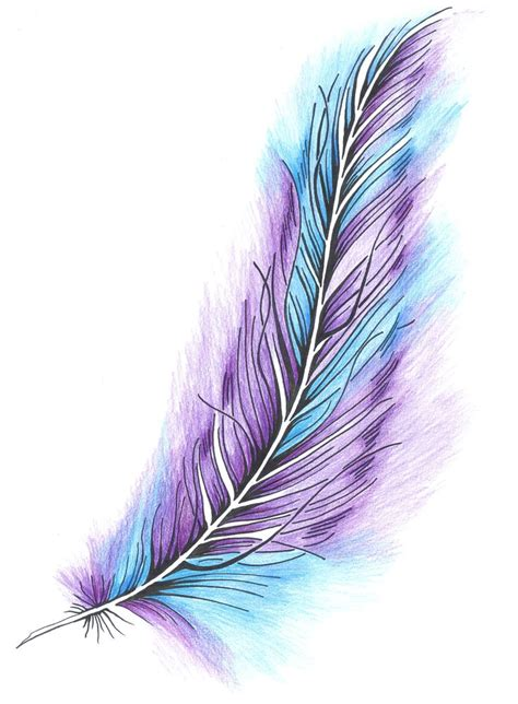 colorful feather colorful feathers www imgkid the image kid