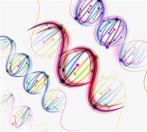 dna colors colorful dna genetic genetic color dna png and vector