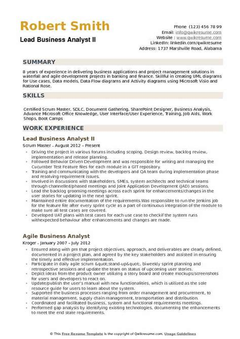 Lead Business Analyst Sle Resume by Lead Business Analyst Resume Sles Qwikresume