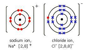 Chloride Ion Diagram gcse bitesize dot and cross diagrams