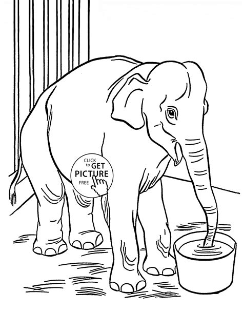 Zoo Elephant Coloring Page For Kids Animal Coloring Pages Where Can You Find Coloring Books