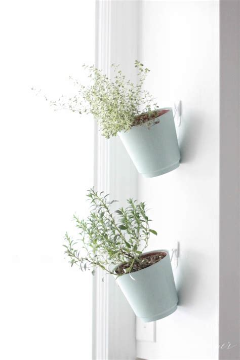Hanging Indoor Planter by Indoor Hanging Planters Pictures Photos And Images For And