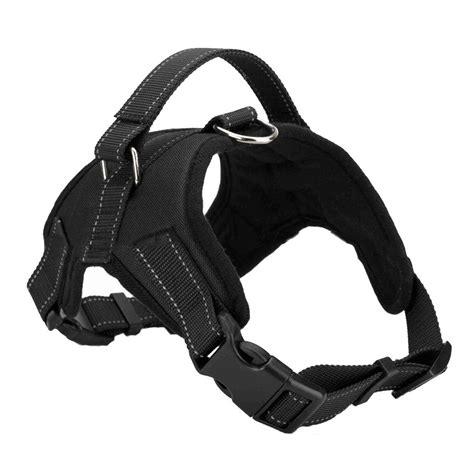 best dog harness the best dog harness for running in 2016 goaheadrunner
