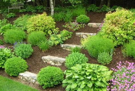 landscaping ideas for hills landscaping ideas gt the challenge of a hill