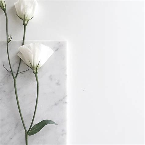 aesthetic white best 25 white aesthetic ideas on white