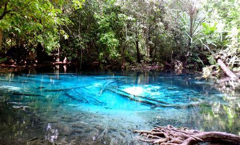 emerald pool krabi holidaygogogocom