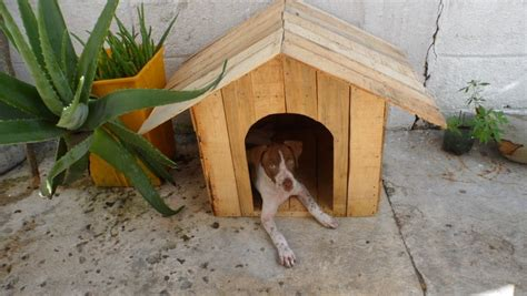 recycled dog house 30 awesome dog house diy ideas indoor outdoor design photos