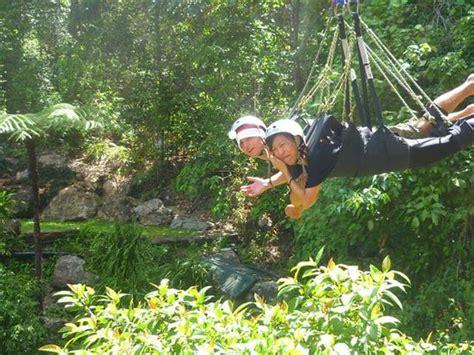 minjin jungle swing australien reisebericht quot cairns part 1 quot