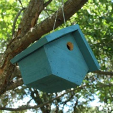 wren bird house plans build a birdhouse easy to build bird house plans
